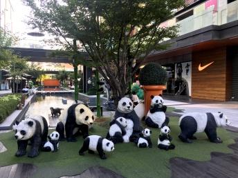 Pandas are worshipped
