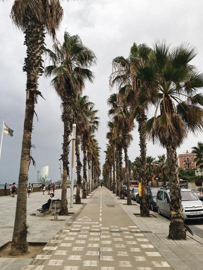 Barceloneta strolls
